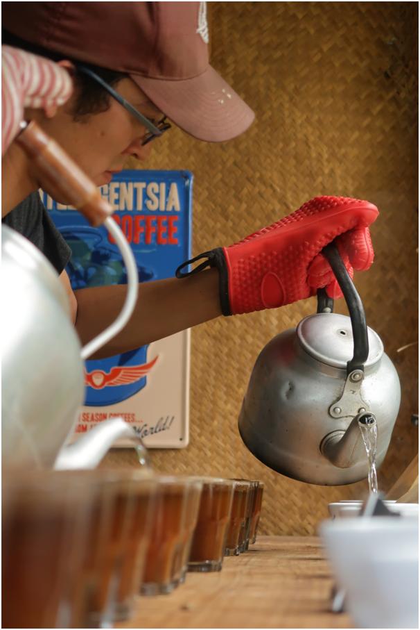 cupping, farma, Gwatemala, regiony kawowe