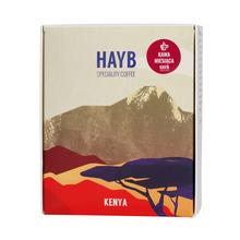 HAYB - Kenia Weithaga Kahindu Filter