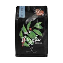 COFFEE PLANT - Brazylia Cerrado Espresso