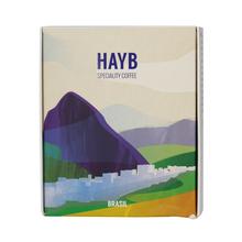 HAYB - Brazylia Pedro Bras