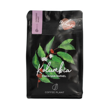 COFFEE PLANT - Kolumbia Finca San Rafael Espresso