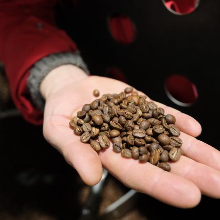 Caffenation - Ethiopia West Arsi Riripa Kelloo Espresso 1kg
