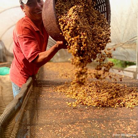 Heresy - Kostaryka La Fila Villalobos Black Honey Filter 252g