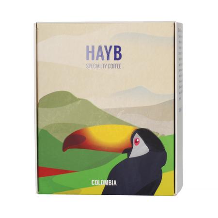 HAYB - Colombia Jorge Emilio Brazo
