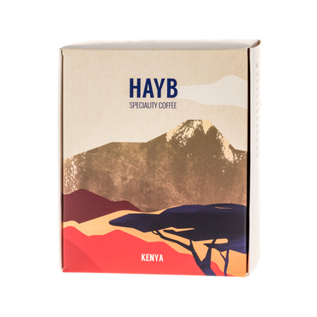 HAYB - Kenia Kariru