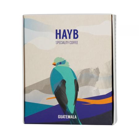 HAYB - Gwatemala Ericka Sanchez