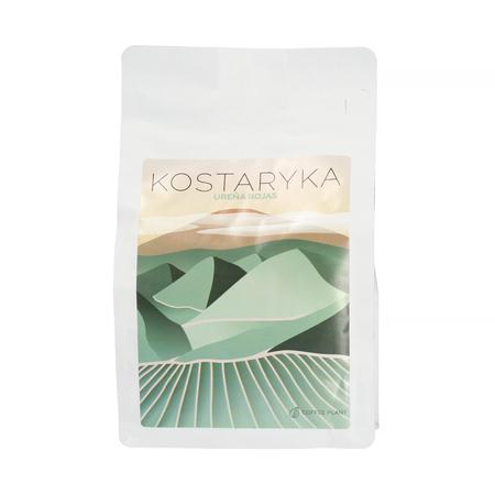 COFFEE PLANT - Kostaryka Urena Rojas Filter