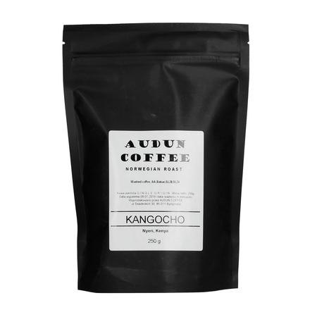 Audun Coffee Kenya Kangocho AA Nyeri Washed 250g, kawa ziarnista (outlet)