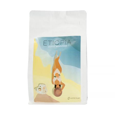COFFEE PLANT - Etiopia Idido Washed Filter