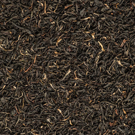 Tregothnan - Classic Tea - Herbata 15 piramidek - Puszka