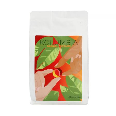 COFFEE PLANT - Kolumbia Gabriel Castano