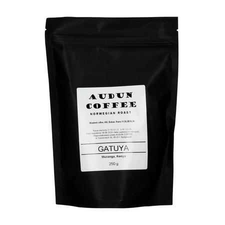 Audun Coffee Kenya Muranga Gatuya AB Washed FIL 250g, kawa ziarnista (outlet)