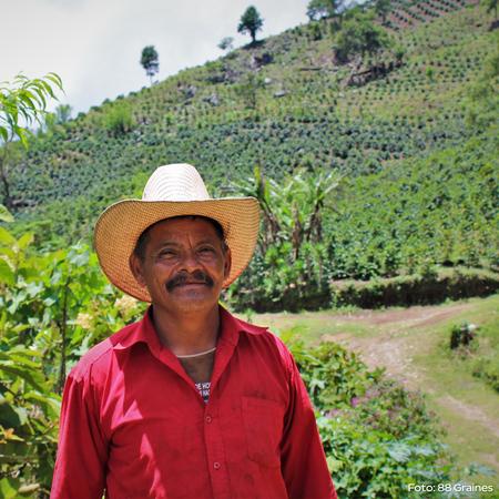 Heresy - Honduras La Vistada 252g